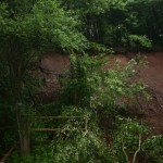 Schadensgutachten Hangrutschung Tiefenort - Geotechnisches Ingenieurbüro Wabra